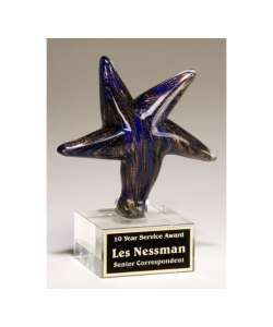 "5.125"" x 6.75"" Blue/Gold Artglass Star"